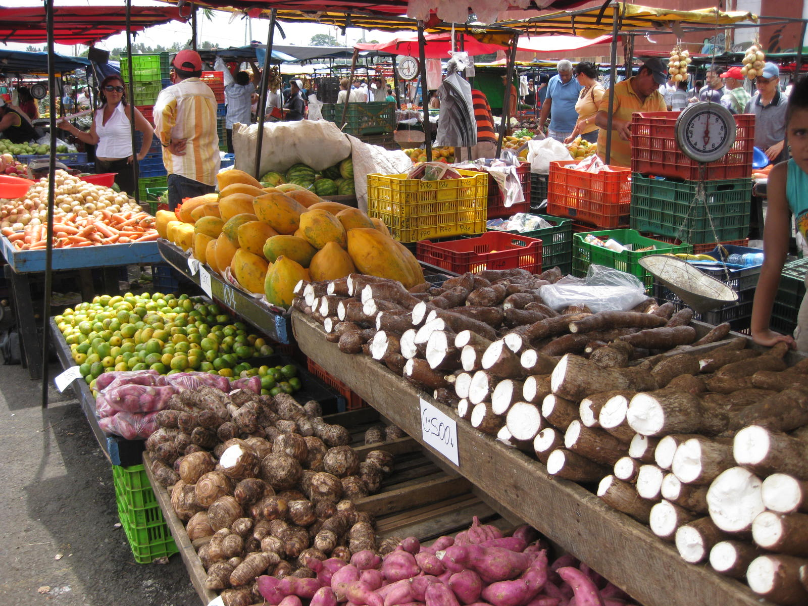 costa rica and the market for See more of real intercontinental san josé costa rica on facebook log in or create new account see more of real intercontinental san josé costa rica on facebook log in forgot account.