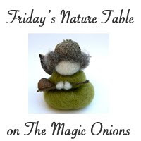 The Magic Onions - Friday's Nature Table