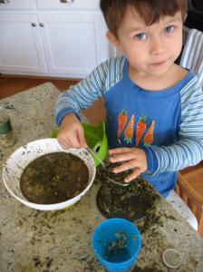 Cooking - Mindful Parenting - Tender Sapling