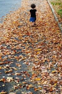 Vibrant Wanderings - Fall Traditions on Alldonemonkey.com